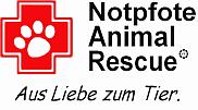 Vereinsseite Notpfote Animal Rescue